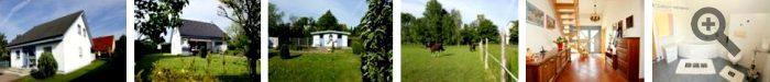 Bilder Haus Immobilienangebot Naunhof
