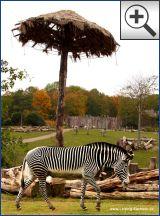 Zoo Leipzig -  Afrikanische Savanne